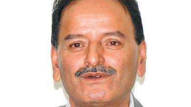 कृष्णप्रसाद सिटौला