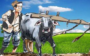 गुजारा चलाउन भारत पस्दै मुक्तहलिया